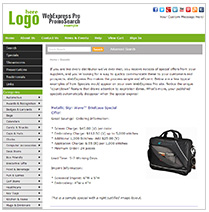 WebExpress Pro Sample Websites