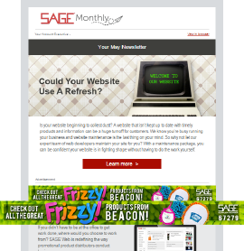 e-Newsletter Ad